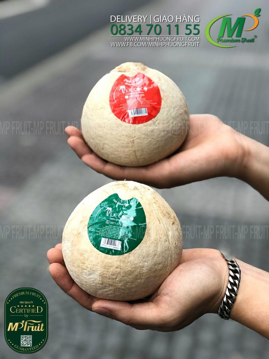 Dừa Dứa và Dừa Xiêm Xanh | Truecoco tại MP Fruit