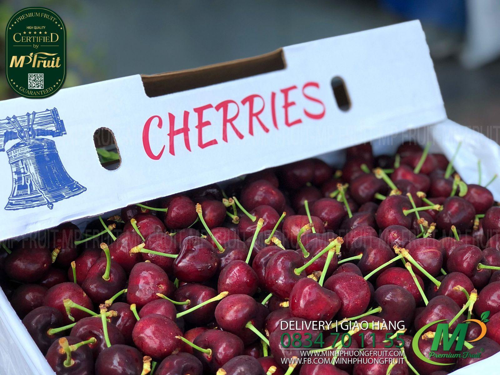 Cherry Đỏ Mỹ Size 8.5   Chuông tại MP Fruits