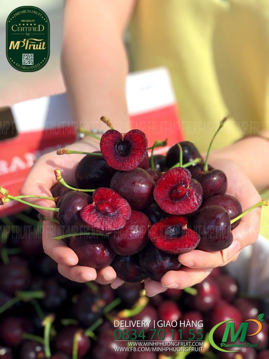 Cherry Đỏ Mỹ Size 9 | Starr Ranch tại MP Fruits