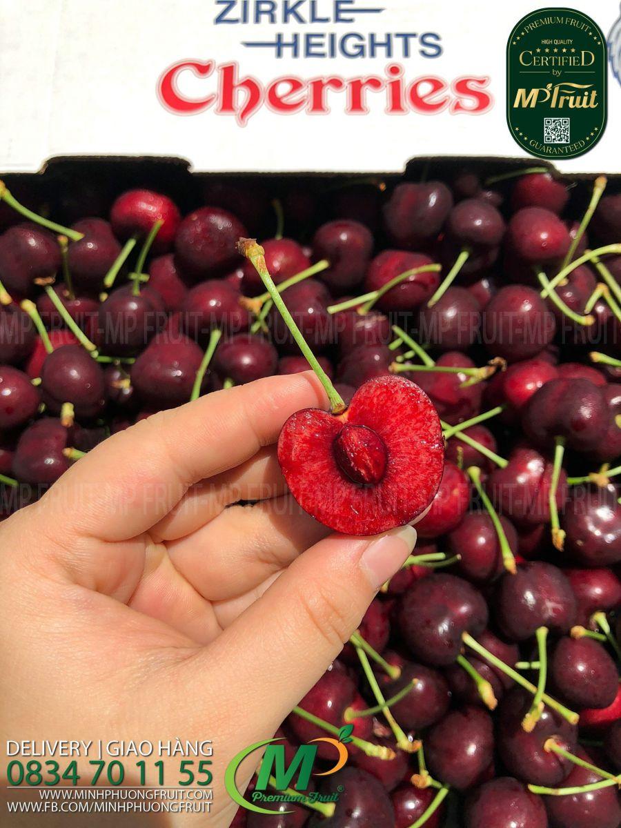 Cherry Đỏ Mỹ Size 8.5 | Zirkle tại MP Fruits