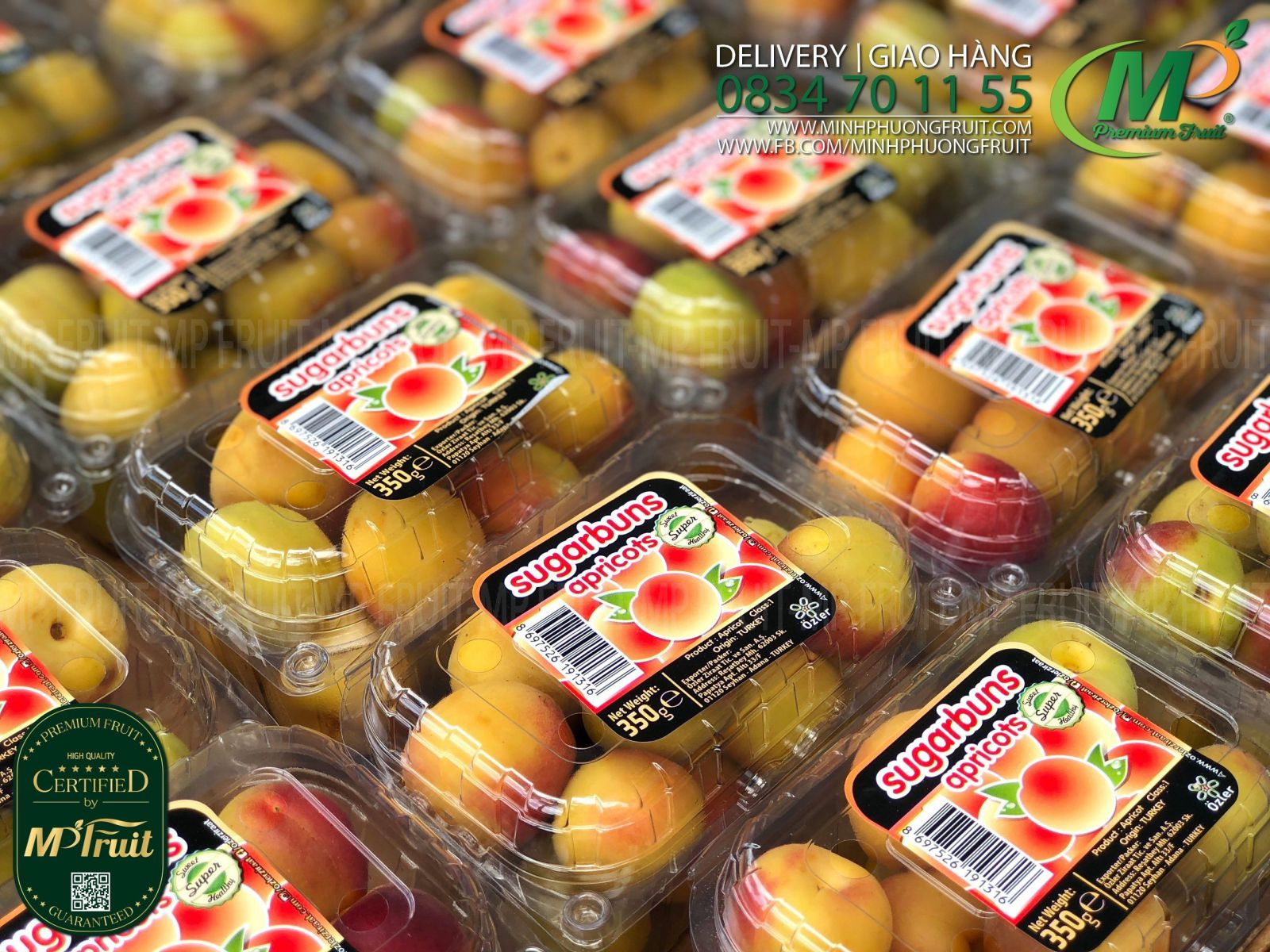 Quả Mơ Tươi Thổ Nhĩ Kỳ Hộp 350g tại MP Fruit