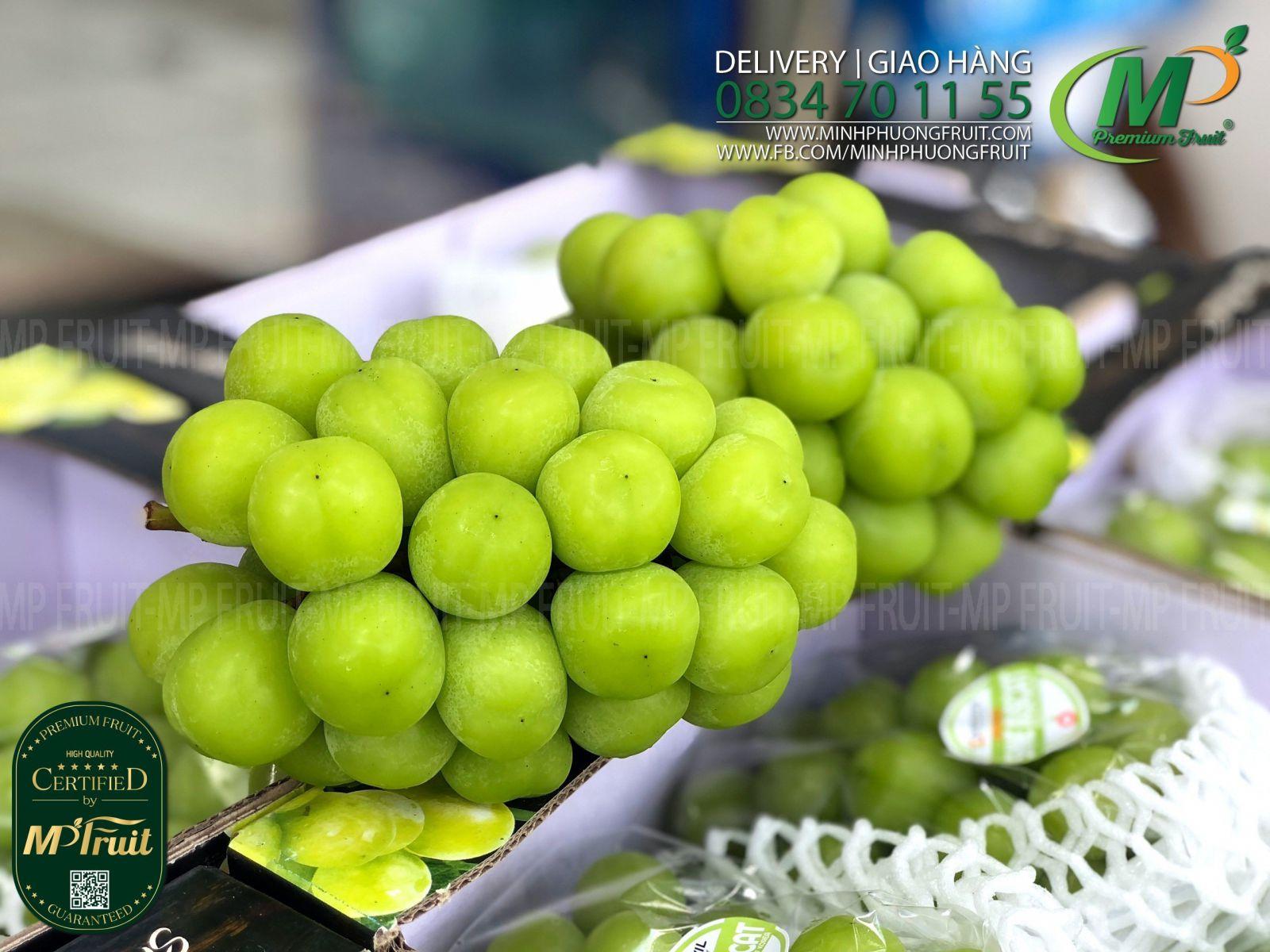 Nho Mẫu Đơn Shine Muscat Premium Hàn Quốc | Greenvil tại MP Fruits