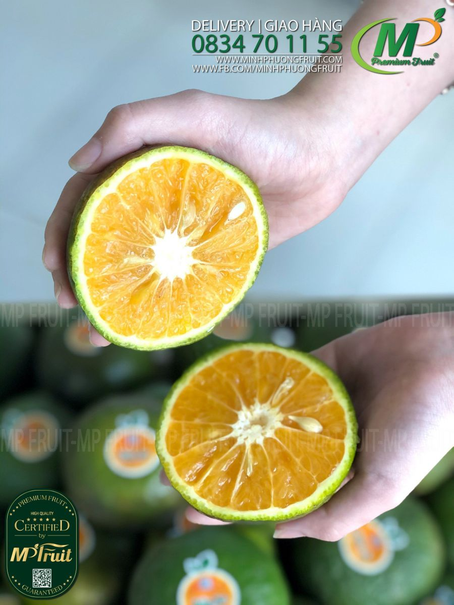 Cam Sành Lai Vung Bảo An tại MP Fruits